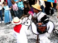 carnaval_de_lausanne_047.jpg